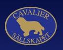 cavaliertop.jpg