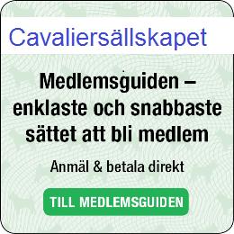 Cavaliersällskapet